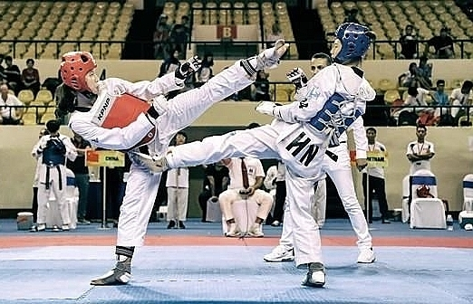 rok supports vietnam in developing taekwondo