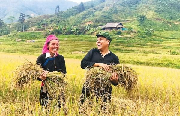 enabling livelihood changes