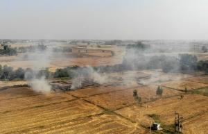 indian farmers step up illegal fires as delhi air crisis worsens