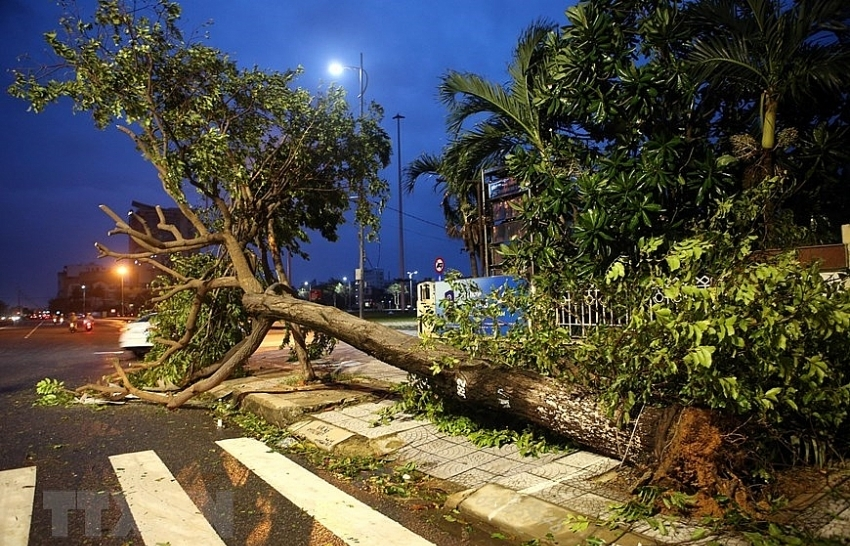 storm molave wrecks havoc in central provinces