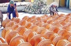 bamboo exports keep shooting up