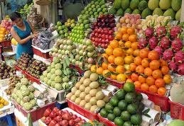 fruit and vegetable exports tipped to rise significantly