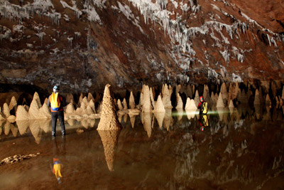 oxalis company promotes cave tours in quang binh province