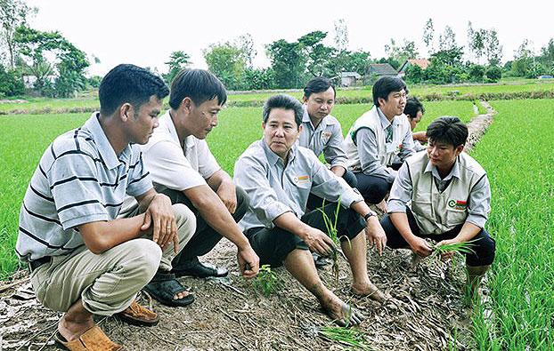 loc troi taps into demand for organic food