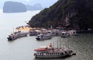 halong city to inspect operations of tourist boats