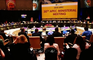 apec adopts guidelines on infrastructure investment