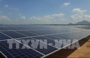 central province aims to commission solar power plants next year