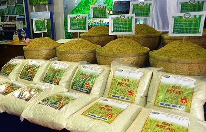 chinese rice importers visit vietnam to find new partners