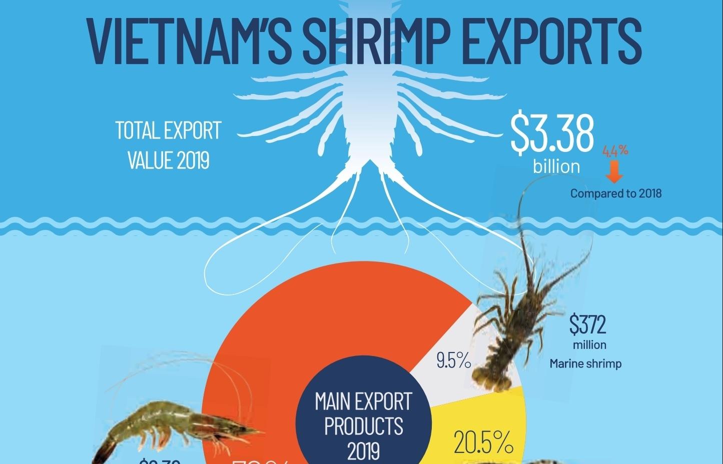 Vietnam's shrimp exports (Infographics)