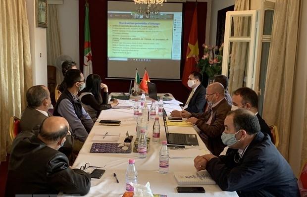 vietnam algeria bolster trade investment promotion