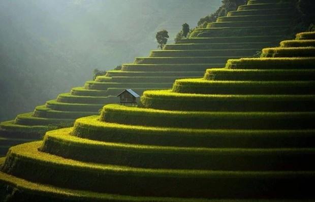 mu cang chai among worlds 50 most beautiful places
