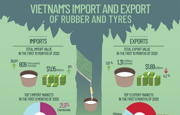 vietnams import and export of rubber and tyres infographics