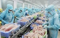 farmers abandon costly tra fish