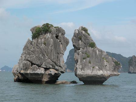 jica helps protect environment in ha long bay