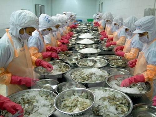 EU Warns Vietnamese Seafood Exporters About Antibiotics