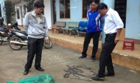 Over 100 live snakes purportedly set free on Vietnam highway