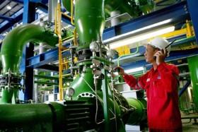 petrovietnam upbeat despite falling oil price