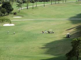 Phoenix Golf Resort hotbed of violations