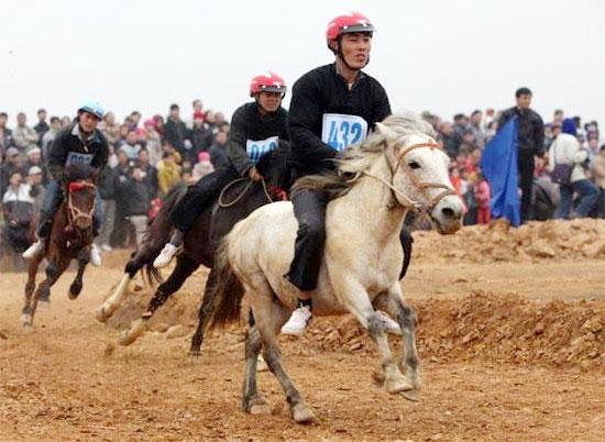 15 billion horse racecourse galloping towards victory