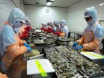 Ministry takes action in response to EU's warning of IUU fishing
