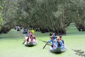 Now is best time to visit Tra Su Cajuput Forest
