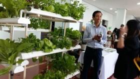 da nang calls for hi tech farms
