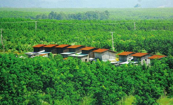 reviving vietnam laos investment