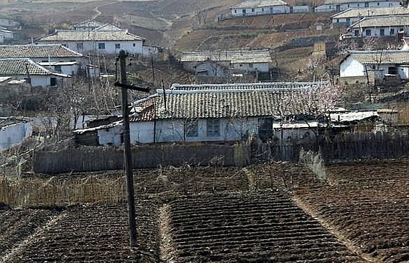 north korea admits farming failures amid food shortages