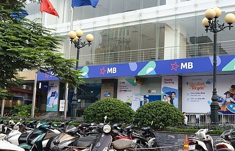 vn shares fall despite good trade news