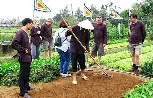 hoi an gears up for tours to tra que vegetable village