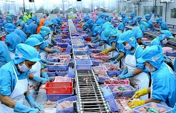 fishery sector seizes opportunities to boost exports