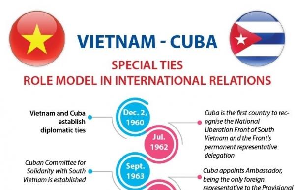 vietnam cuba special ties a role model international relations infographics