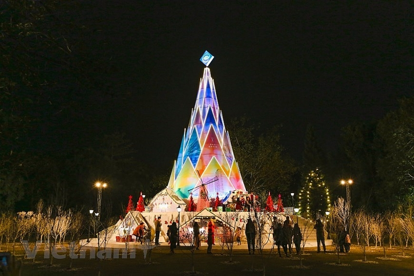 giant christmas trees in capital city