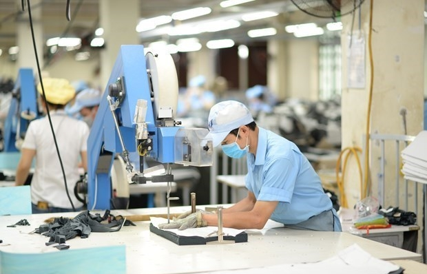 vietnams gdp growth estimated at 291 pct this year
