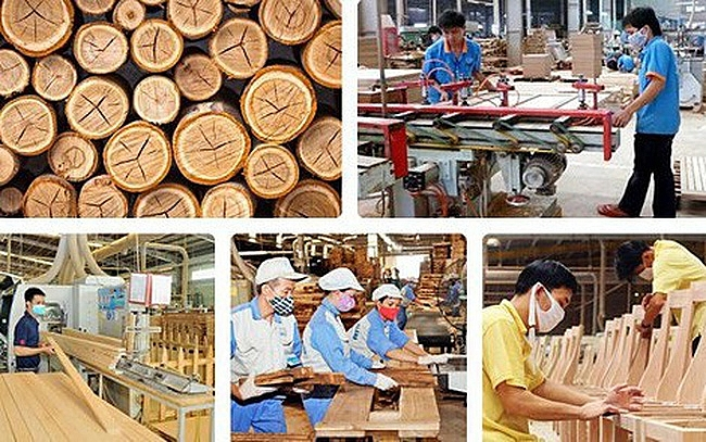 Timber Companies In Vietnam Seizing The Opportunity