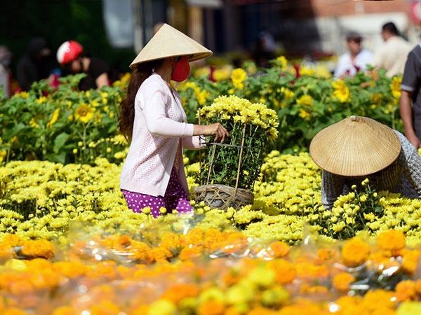 amid covid 19 vietnams brand value skyrockets 29 per cent to 319 billion