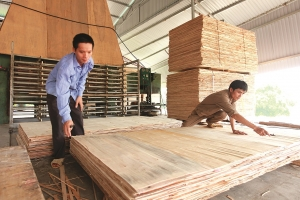 microfinance from vbsp helps young entrepreneurs in thanh hoa