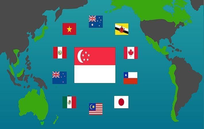 cptpp to widen vietnams inroads to partner markets