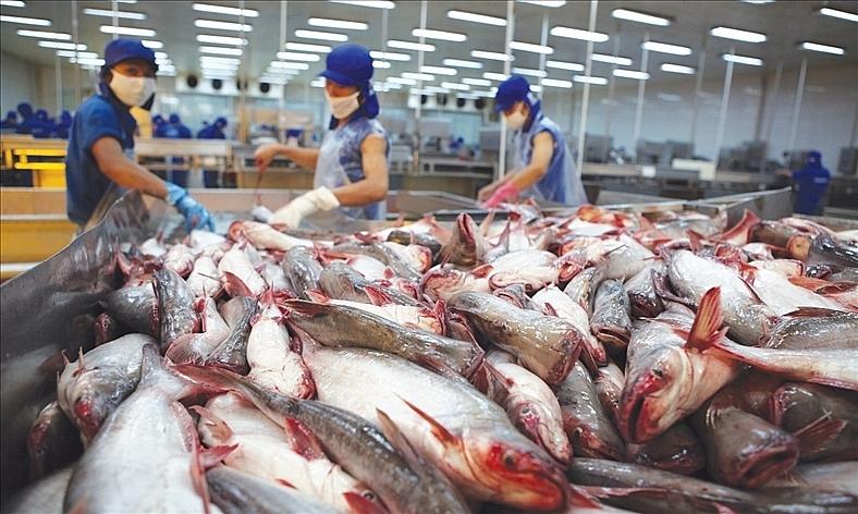 us places heavy tariff on vietnamese pangasius