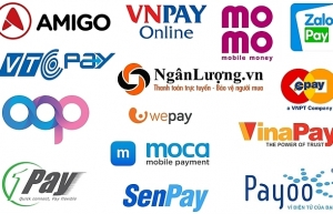 foreign funds to help domestic e payment firms with competition