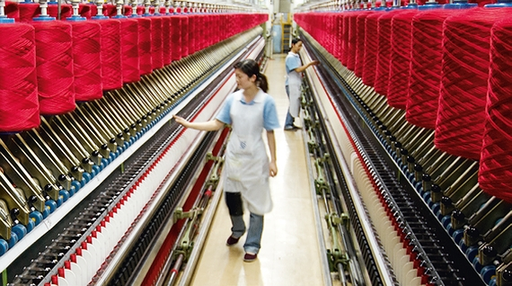 first sheep wool yarn spinning plant to be built in da lat