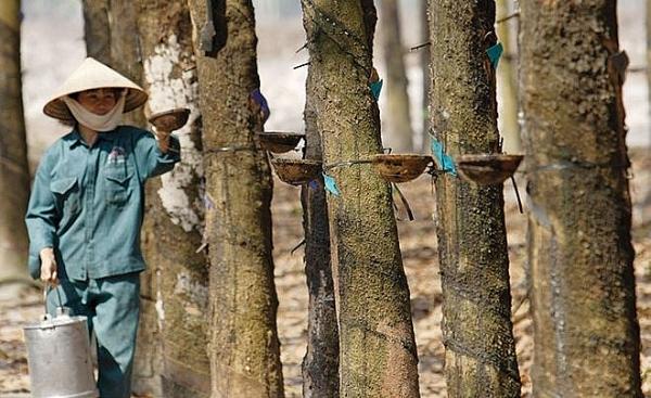 rubber companies set glum business targets