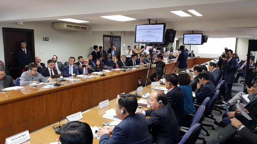 developing value chains to connect vietnamese and brazilian businesses