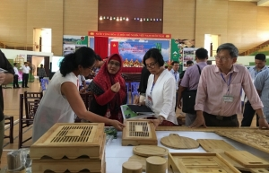 sustainable bamboo value chain turns heads of international partners