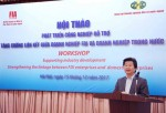 Strengthening linkages between FDI and domestic enterprises to support industry development