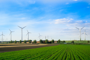 global wind energy council calls on vietnam to extend wind tariff and clean energy lead