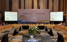 apec economic leaders week 2017 kicked off in danang