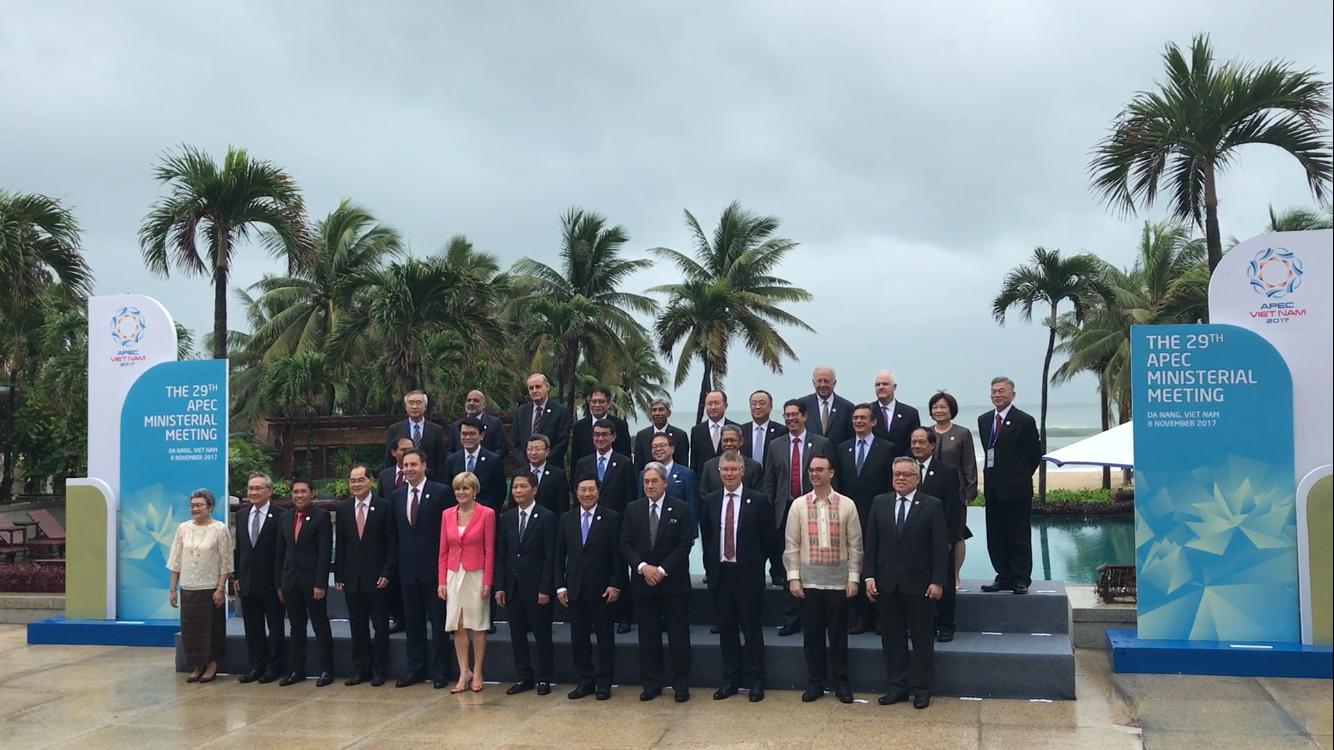Vietnam makes hefty proposals at APEC
