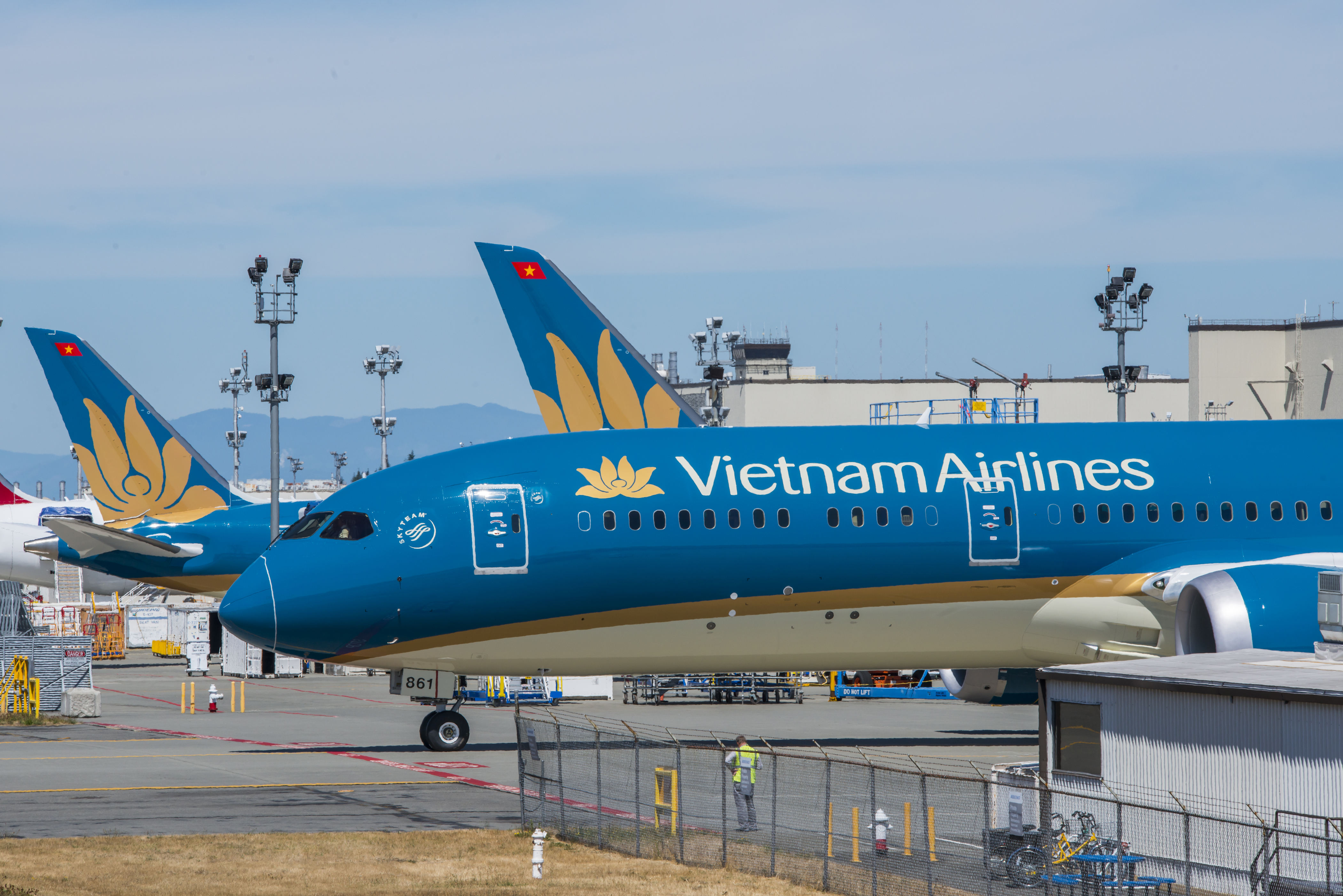 vietnam airlines flourishes with ana holdings partnership