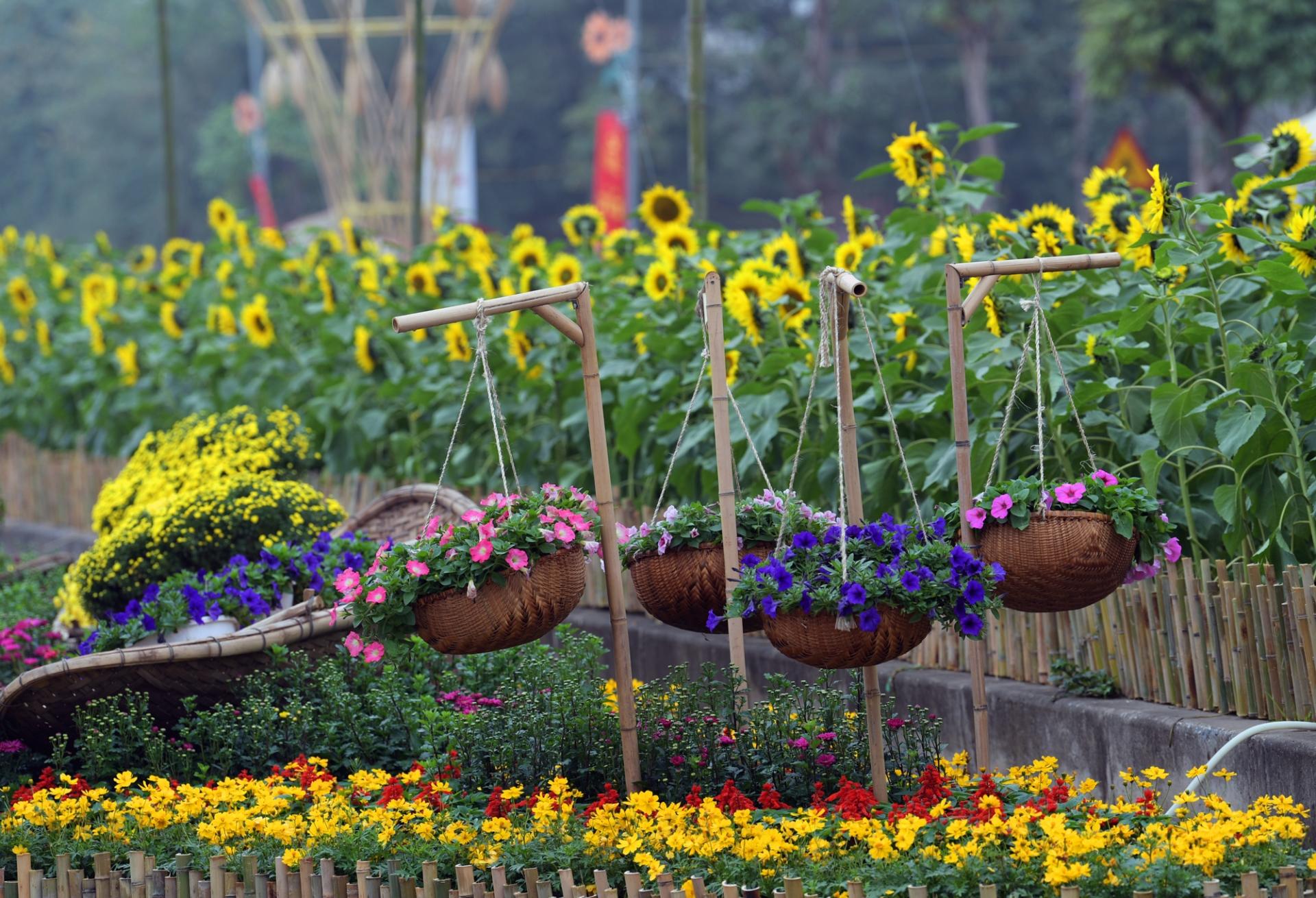 flower street opens at splendora urban area to celebrate lunar new year holiday